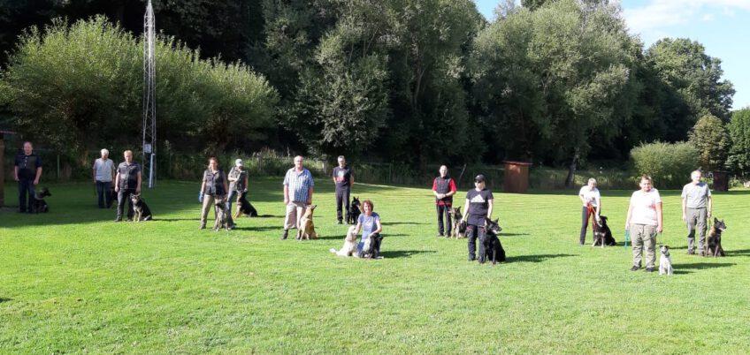 Sommerprüfung beim GHSV Brochthausen